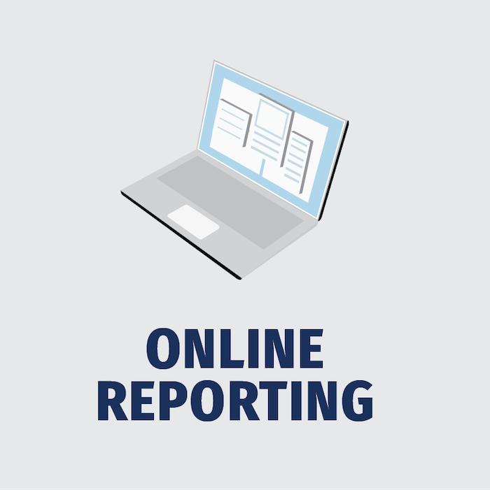 Online_Reporting_LT